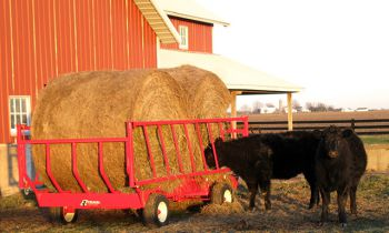 CroppedImage350210-EZ-Trail-Jr.-Bale-Carrier.jpg