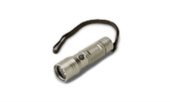 CroppedImage350210-Personal-LED-Flashlight-3AAA.jpg